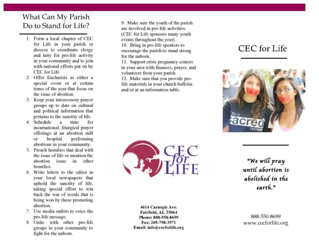 CECFL_Brochure-cover
